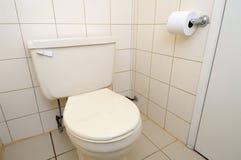Säubern Sie Toilette und Toilettenpapier Lizenzfreies Stockbild
