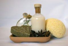 Säubern Sie und natürlicher Badekurort Stockfotos