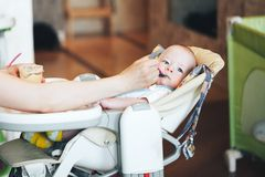 Säuglingsbaby-Kinderjunge sechs Monate alte isst Lizenzfreies Stockfoto