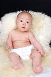 Säuglingsschätzchenanstarren stockbild
