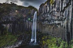 Sławna Svartifoss siklawa w Iceland przy latem, boczny widok obrazy royalty free