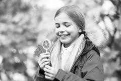 Słodki cukierek jej trofeum na Halloween dniu Trikowy lub funda cukierki cukierek Dzieciak dziewczyny odzieży żakiet dla sezonu j zdjęcia stock