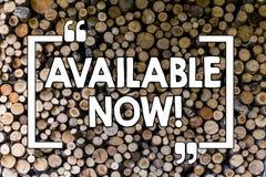 Słowa writing tekst Dostępny Teraz Biznesowy pojęcie dla promocji usługi produktu tła Drewnianego rocznika dostępności obrazy royalty free