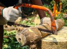 Såg bitande trä för snickaren med Hantverkare som arbetar med handsågen Arkivfoto