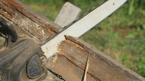 Såga ett träbräde med chainsawen, skilja sig åt sidosikten, sågande process, wood sågspån i olika riktningar, lager videofilmer