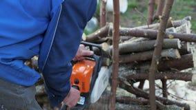 Sågande träd för okänd manskogsarbetare med chainsawen i skogen lager videofilmer