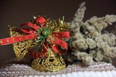 Sången av julklockorna och den torra filialen blomstrar Arkivfoto