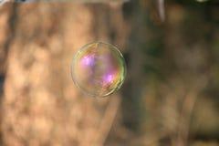 Såpbubbla med suddig skogbakgrund arkivfoton
