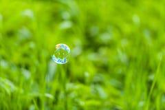 Såpbubbla som är främst av grön bakgrund royaltyfri fotografi