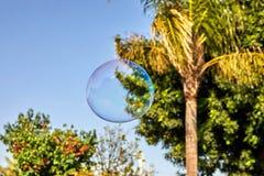 Såpbubblan flyger mot den blåa himlen och palmträden arkivbild