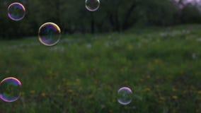 Såpbubblor mot bakgrunden av röjningen arkivfilmer