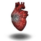 Sårad hjärta Arkivbild