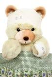 sårad nalle för björn Royaltyfri Fotografi