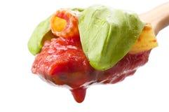 Sås av tomater med maccaronien arkivbild