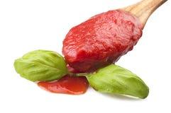 Sås av tomater och basilika royaltyfri bild