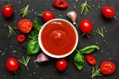 Sås för tomatketchup i en bunke med kryddor, örter och körsbärsröda tomater Royaltyfri Foto