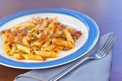 Sås och pasta Royaltyfria Bilder