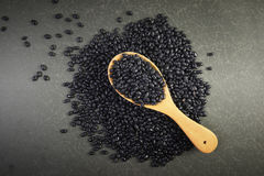 Sème des haricots noirs utiles pour la santé dans des cuillères en bois sur le fond gris Image libre de droits