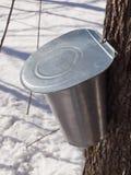 Sève d'érable moissonnant au Québec, Canada Photographie stock