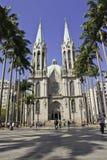 Sé大教堂- São保罗-巴西 库存照片