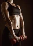 Séance d'entraînement de forme physique Image libre de droits