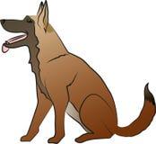 Séance de chien de berger Photo libre de droits