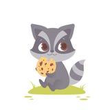 Séance mignonne de raton laveur de bébé, mangeant un biscuit illustration stock