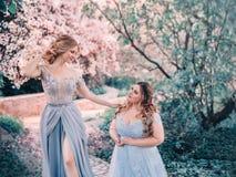 Séance photos de fée de famille Deux femmes blondes avec les cheveux onduleux dans luxueux, fabuleux, bleu s'habille contre le co Image libre de droits