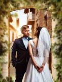 Séance photos de mariage de beaux nouveaux mariés Photos libres de droits