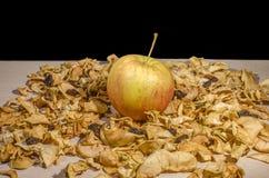 Séché et les fruits frais Image stock