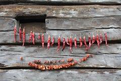 Séchage de paprika Photos libres de droits