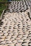 Séchage de poissons au soleil, la Thaïlande. Images stock