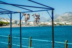 Séchage de poulpe sur le soleil Accrocher sur la corde La Grèce, Crète ha images libres de droits