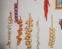 Séchage des ampoules accrochantes d'oignon Photographie stock
