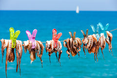 Séchant le poulpe au soleil dans le village de bord de la mer de Plaka dessus image libre de droits