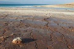 Sécheresse de la mer morte Images libres de droits