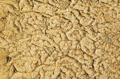 sécheresse La terre criquée Photo stock