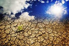 Sécheresse, la terre sèche Photographie stock libre de droits