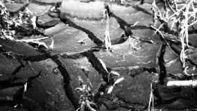 sécheresses Images libres de droits