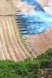 Séchez, changement climatique Photo libre de droits