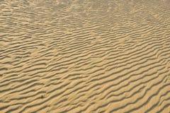 Séchez le sable d'or ondulé, idéal pour des milieux Image stock