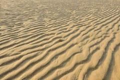 Séchez le sable d'or ondulé, idéal pour des milieux Photos libres de droits