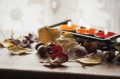 Séchez les feuilles d'automne et les glands colorés du chêne rouge du nord sur le conseil en bois avec trois bougies brûlantes Image stock
