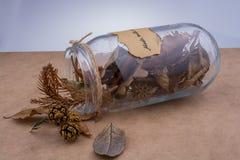 Séchez les feuilles dans des bouteilles sur le fond brun Photos libres de droits