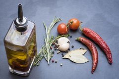 Séchez les poivrons de piment, les tomates, l'ail et l'assaisonnement d'un rouge ardent Images libres de droits