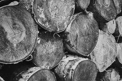 Séchez les rondins coupés de bouleau-arbre empilés sur l'un l'autre photo stock