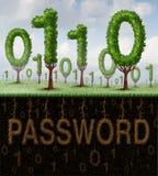 Sécurité de mot de passe Images libres de droits