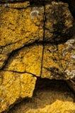 Sédiment de roche au parc national de Hetch Hetchy Photo stock