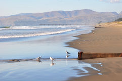 Séisme de Christchurch - plage de Brighton Photographie stock