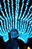 Séjour de boule de cristal dans les lumières bleues de guirlande Photographie stock libre de droits